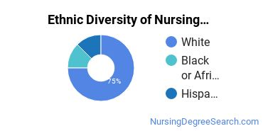 Nursing Administration Majors in NJ Ethnic Diversity Statistics