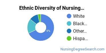 Nursing Administration Majors in NC Ethnic Diversity Statistics