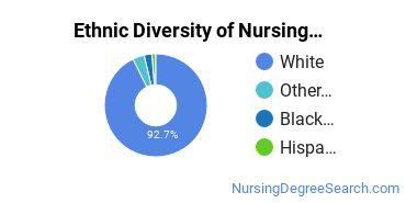 Nursing Administration Majors in OH Ethnic Diversity Statistics