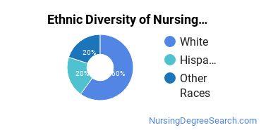 Nursing Administration Majors in RI Ethnic Diversity Statistics