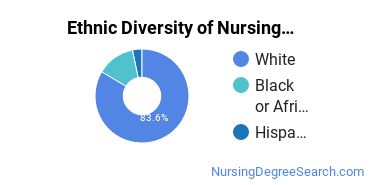 Nursing Administration Majors in SC Ethnic Diversity Statistics