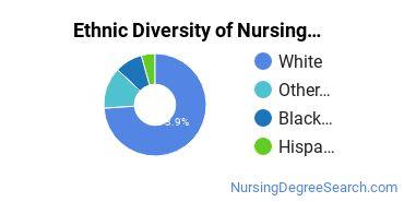 Nursing Administration Majors in TN Ethnic Diversity Statistics