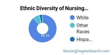 Nursing Administration Majors in WV Ethnic Diversity Statistics