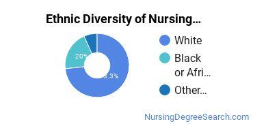 Nursing Administration Majors in WI Ethnic Diversity Statistics