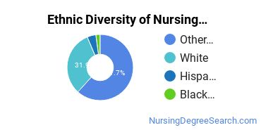 Nursing Assistants & Aides Majors in AK Ethnic Diversity Statistics