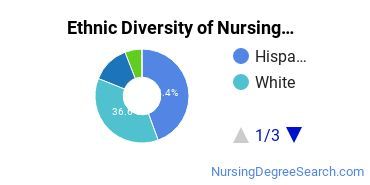 Nursing Assistants & Aides Majors in AZ Ethnic Diversity Statistics