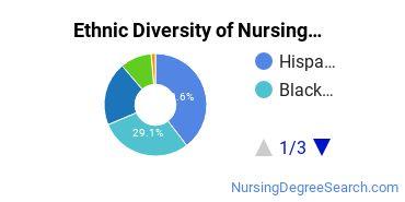 Nursing Assistants & Aides Majors in FL Ethnic Diversity Statistics