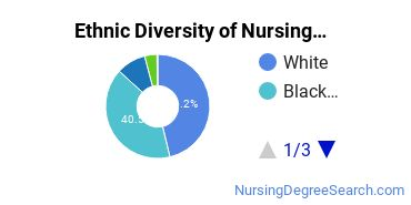 Nursing Assistants & Aides Majors in GA Ethnic Diversity Statistics