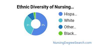 Nursing Assistants & Aides Majors in ID Ethnic Diversity Statistics