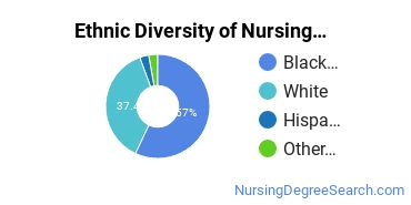 Nursing Assistants & Aides Majors in MS Ethnic Diversity Statistics