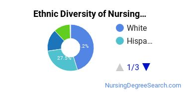 Nursing Assistants & Aides Majors in NV Ethnic Diversity Statistics