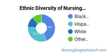 Nursing Assistants & Aides Majors in NJ Ethnic Diversity Statistics