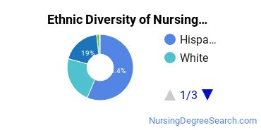 Nursing Assistants & Aides Majors in NM Ethnic Diversity Statistics