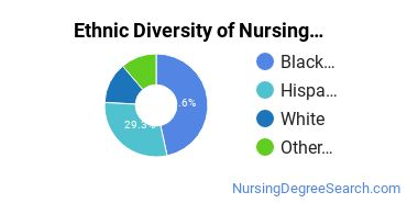 Nursing Assistants & Aides Majors in NY Ethnic Diversity Statistics