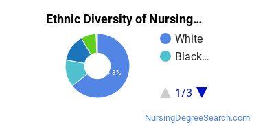 Nursing Assistants & Aides Majors in NC Ethnic Diversity Statistics