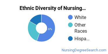 Nursing Assistants & Aides Majors in OR Ethnic Diversity Statistics