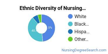 Nursing Assistants & Aides Majors in SC Ethnic Diversity Statistics