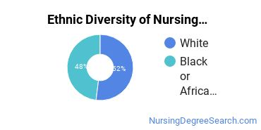 Nursing Assistants & Aides Majors in VA Ethnic Diversity Statistics