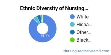 Nursing Assistants & Aides Majors in WV Ethnic Diversity Statistics