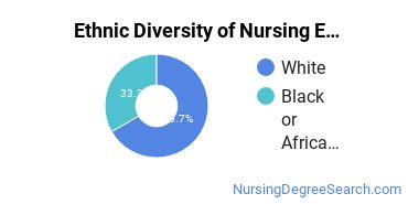 Nursing Education Majors in AL Ethnic Diversity Statistics