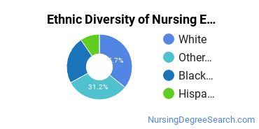 Nursing Education Majors in AZ Ethnic Diversity Statistics