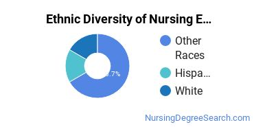 Nursing Education Majors in CA Ethnic Diversity Statistics