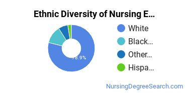 Nursing Education Majors in CO Ethnic Diversity Statistics