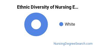 Nursing Education Majors in DC Ethnic Diversity Statistics