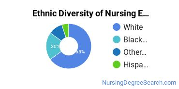 Nursing Education Majors in GA Ethnic Diversity Statistics