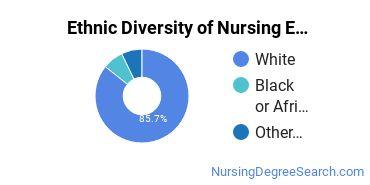 Nursing Education Majors in IA Ethnic Diversity Statistics