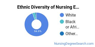 Nursing Education Majors in MA Ethnic Diversity Statistics