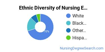 Nursing Education Majors in MN Ethnic Diversity Statistics