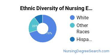 Nursing Education Majors in NH Ethnic Diversity Statistics