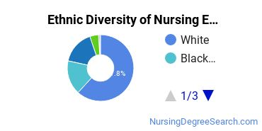Nursing Education Majors in TX Ethnic Diversity Statistics