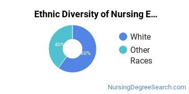 Nursing Education Majors in WV Ethnic Diversity Statistics