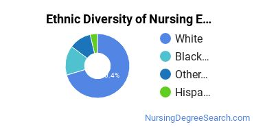 Nursing Education Majors in WI Ethnic Diversity Statistics
