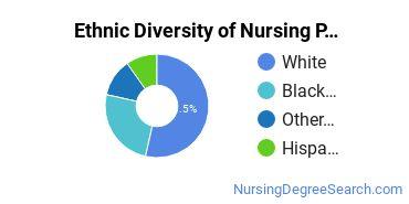 Nursing Practice Majors in AZ Ethnic Diversity Statistics