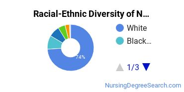 Racial-Ethnic Diversity of Nursing Practice Students with Bachelor's Degrees
