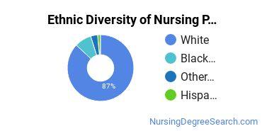 Nursing Practice Majors in KY Ethnic Diversity Statistics