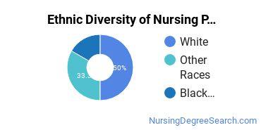 Nursing Practice Majors in RI Ethnic Diversity Statistics
