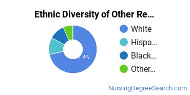 Nursing Research & Other Majors in CO Ethnic Diversity Statistics