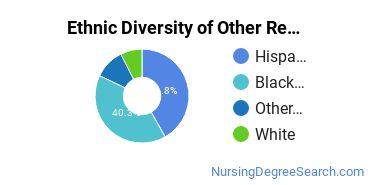 Nursing Research & Other Majors in FL Ethnic Diversity Statistics