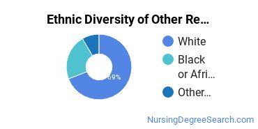 Nursing Research & Other Majors in VA Ethnic Diversity Statistics