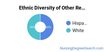 Nursing Research & Other Majors in WY Ethnic Diversity Statistics