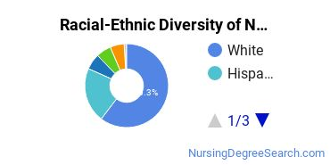 Racial-Ethnic Diversity of Nursing Science Students with Bachelor's Degrees
