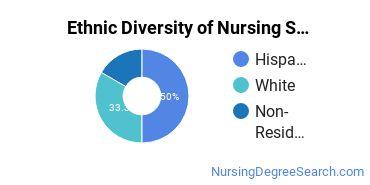 Nursing Science Majors in NM Ethnic Diversity Statistics