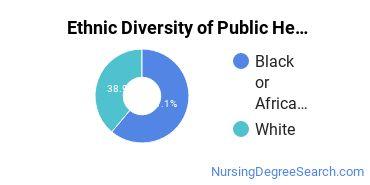 Public Health Nursing Majors in AL Ethnic Diversity Statistics