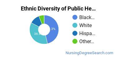 Public Health Nursing Majors in AZ Ethnic Diversity Statistics