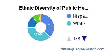 Public Health Nursing Majors in CA Ethnic Diversity Statistics