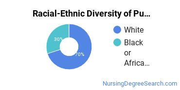 Racial-Ethnic Diversity of Public Health/Community Nursing Graduate Certificate Students